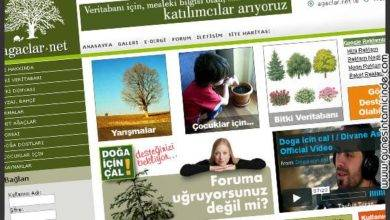 Photo of Ağaçlar.Net