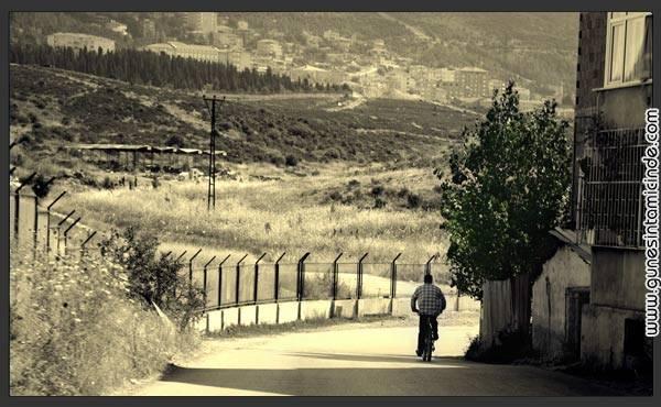 Photo of Bisiklet, Ağaç, Adam ve Türkiye