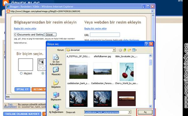 bloggerdansiteac15.jpg