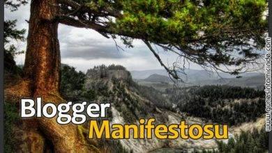 Photo of Blogger Manifestosu