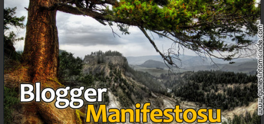 bloggermanifesto
