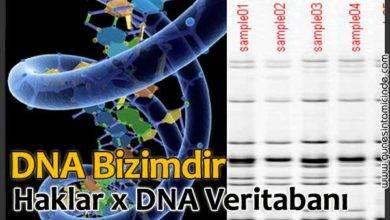 Photo of DNAmız Bizimdir! Haklar x DNA Veritabanı