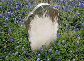 Dolly'nin mezarı