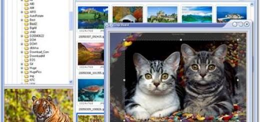 fsviewerscreenshot1.jpg