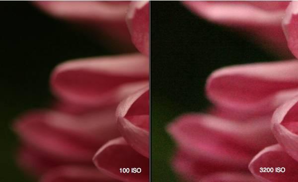 iso-100-3200.jpg