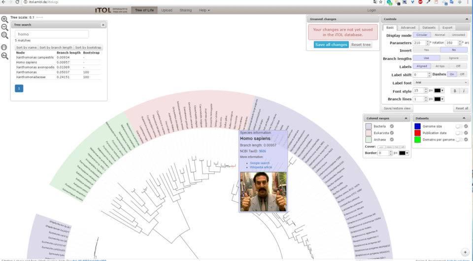 Süleyman Sönmez - Güneşin Tam İçinde hayatagaci2 Canlılar Alemini İnteraktif Hayat Ağaçlarıyla Tanıyalım - Biyoloji | Tree of Life Project - OneZoom Bilim ve Teknoloji Eğitim Eğitim Teknolojileri  Tree of Life Türler Sınıf OneZoom Fen Bilgisi Fen Cins Canlılar Alemi Biyoloji Alemler   Süleyman Sönmez - Güneşin Tam İçinde hayatagaci3 Canlılar Alemini İnteraktif Hayat Ağaçlarıyla Tanıyalım - Biyoloji | Tree of Life Project - OneZoom Bilim ve Teknoloji Eğitim Eğitim Teknolojileri  Tree of Life Türler Sınıf OneZoom Fen Bilgisi Fen Cins Canlılar Alemi Biyoloji Alemler   Süleyman Sönmez - Güneşin Tam İçinde striking-image2-960x960 Canlılar Alemini İnteraktif Hayat Ağaçlarıyla Tanıyalım - Biyoloji | Tree of Life Project - OneZoom Bilim ve Teknoloji Eğitim Eğitim Teknolojileri  Tree of Life Türler Sınıf OneZoom Fen Bilgisi Fen Cins Canlılar Alemi Biyoloji Alemler   Süleyman Sönmez - Güneşin Tam İçinde treeoflifeinteraktive-960x498 Canlılar Alemini İnteraktif Hayat Ağaçlarıyla Tanıyalım - Biyoloji | Tree of Life Project - OneZoom Bilim ve Teknoloji Eğitim Eğitim Teknolojileri  Tree of Life Türler Sınıf OneZoom Fen Bilgisi Fen Cins Canlılar Alemi Biyoloji Alemler   Süleyman Sönmez - Güneşin Tam İçinde ornekkopekbaligi-960x589 Canlılar Alemini İnteraktif Hayat Ağaçlarıyla Tanıyalım - Biyoloji | Tree of Life Project - OneZoom Bilim ve Teknoloji Eğitim Eğitim Teknolojileri  Tree of Life Türler Sınıf OneZoom Fen Bilgisi Fen Cins Canlılar Alemi Biyoloji Alemler   Süleyman Sönmez - Güneşin Tam İçinde itol-960x549 Canlılar Alemini İnteraktif Hayat Ağaçlarıyla Tanıyalım - Biyoloji | Tree of Life Project - OneZoom Bilim ve Teknoloji Eğitim Eğitim Teknolojileri  Tree of Life Türler Sınıf OneZoom Fen Bilgisi Fen Cins Canlılar Alemi Biyoloji Alemler   Süleyman Sönmez - Güneşin Tam İçinde itolinsan-960x530 Canlılar Alemini İnteraktif Hayat Ağaçlarıyla Tanıyalım - Biyoloji | Tree of Life Project - OneZoom Bilim ve Teknoloji Eğitim Eğitim Teknolojileri  Tree of Life Türler Sınıf OneZoom Fen