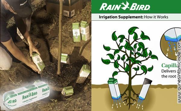 rainbird ust 1 Rain Bird su tutan jeller. Bir defa sulayın, toprağı sürekli nemli tutsun. Mesela 30 günle 90 gün arası. Yanındaki bitkilerin sürekli su almasını sağlasın. Hem çevreci, hem ekonomik, hem kıraç çöl arazileri tarıma ya da ağaçlandırmaya hazır getirme de süper buluş. Rain Bird su tutan jeller. Bir defa sulayın, toprağı sürekli nemli tutsun. Mesela 30 günle 90 gün arası. Yanındaki bitkilerin sürekli su almasını sağlasın. Hem çevreci, hem ekonomik, hem kıraç çöl arazileri tarıma ya da ağaçlandırmaya hazır getirme de süper buluş.