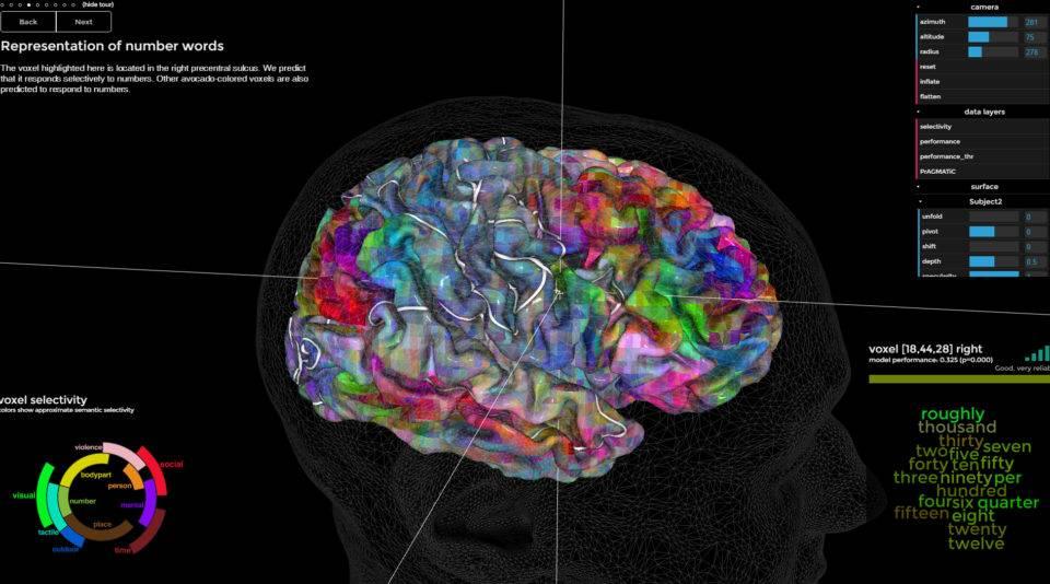 Süleyman Sönmez - Güneşin Tam İçinde sayilarnerede-960x534 Beynimizde Kelimeler Nerede Saklanıyor?   3 Boyutlu Beyin Modelinde Görün   Beyin Sözlüğü Bilim ve Teknoloji  Kelime bilim Beyin okuma beyin Araştırma 3D 3 boyutlu