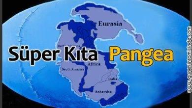 Photo of Süper Kıta | Pangea